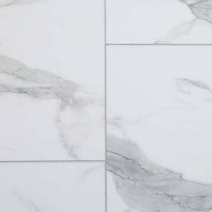 Axis Pro 12 Collection by AxisCor Vinyl Tile 12x24 Carri Marble