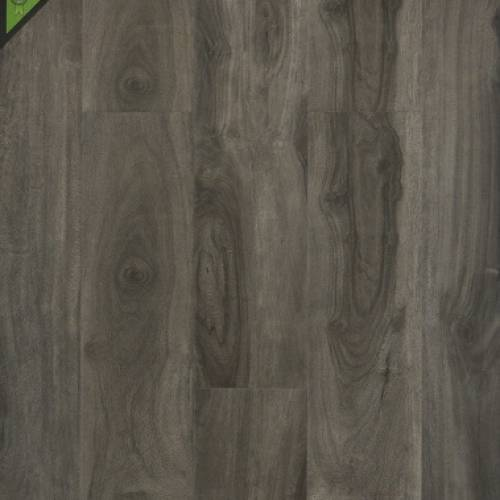 DDCC Silver Maple Laminate