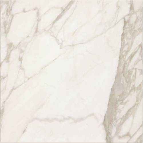 Calacatta Collection by Happy Floors Porcelain Tile 19x19 in. - Semi-Polished
