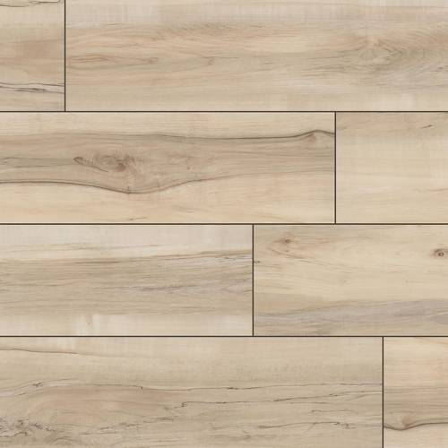 Everlife XL Cyrus Collection by MSI Vinyl Plank 9x60 Akadia
