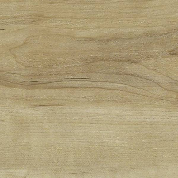 Pacific Maple