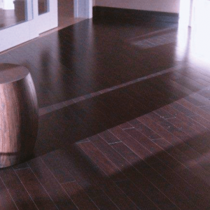 Engineered Collection by Triangulo Engineered Hardwood 3-1/4 in. Brazilian Chestnut - Maduro