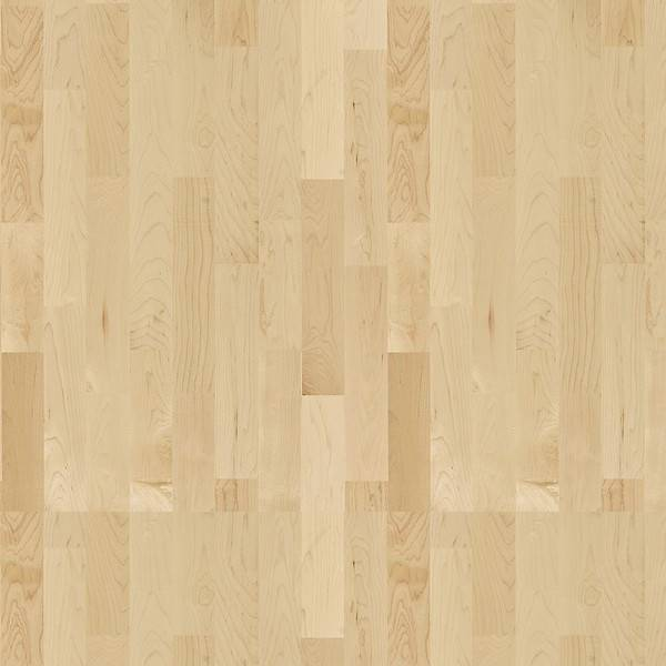 Hard Maple Activity Floor