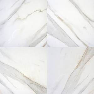 Pietra Calacatta Collection by MSI Porcelain Tile 24x24 in. Polished